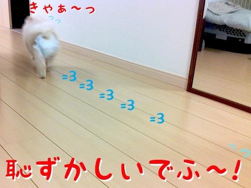 Photo 12月 07, 1 20 06 午前.jpg