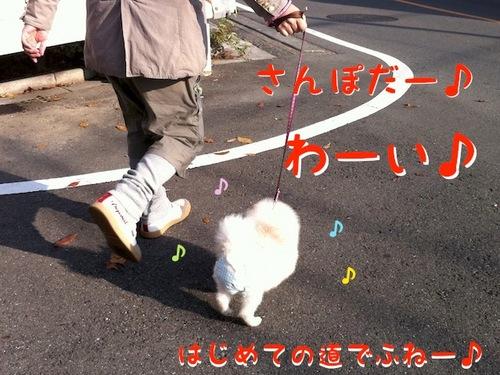 Photo 12月 08, 8 17 20 午後.jpg