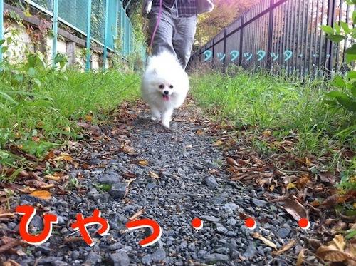 Photo 12月 08, 8 18 35 午後.jpg