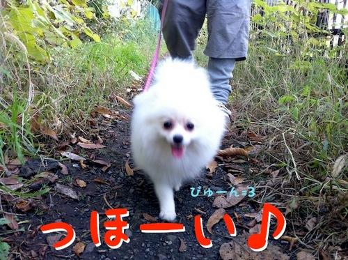 Photo 12月 08, 8 19 37 午後.jpg