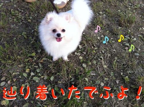 Photo 12月 08, 8 21 05 午後.jpg