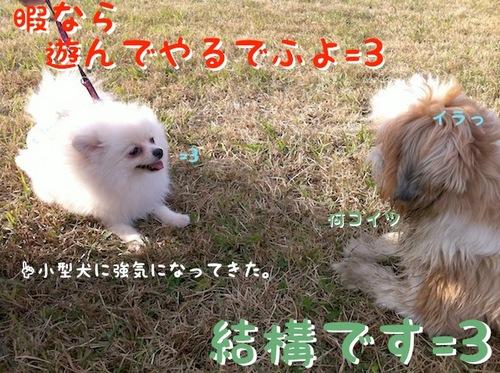 Photo 12月 10, 1 23 34 午後.jpg