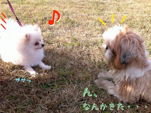 Photo 12月 10, 1 24 41 午後.jpg