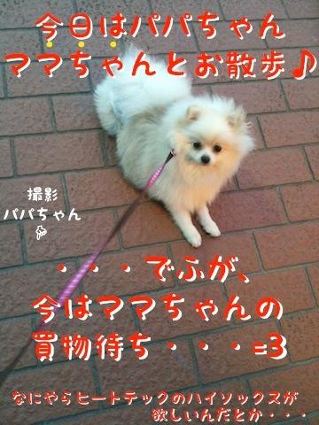 Photo 12月 18, 8 24 13 午後.jpg