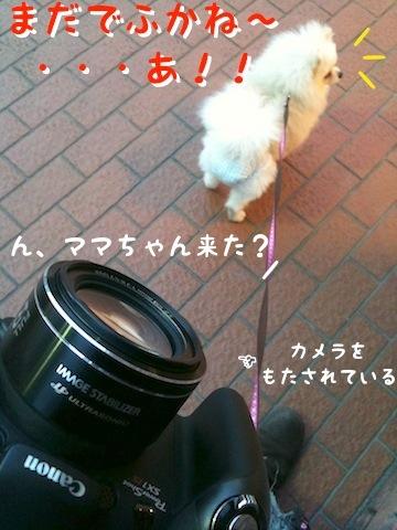 Photo 12月 18, 8 24 29 午後.jpg