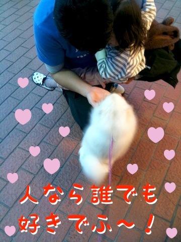 Photo 12月 18, 8 24 49 午後.jpg