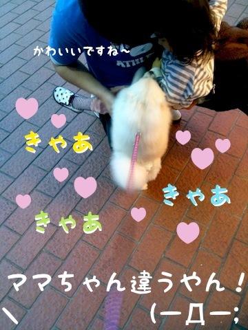 Photo 12月 18, 8 25 18 午後.jpg