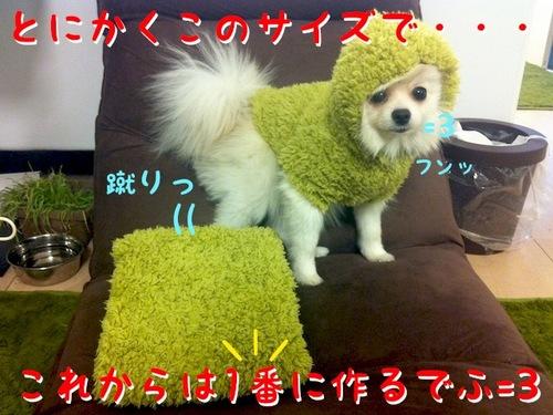 Photo 1月 24, 5 12 50 午後.jpg