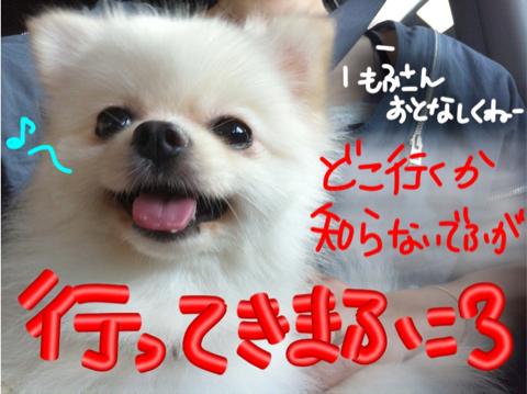 image-20110818141712.png
