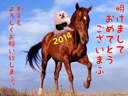 2014nennga.JPG