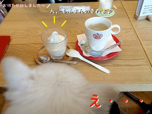 ドッグデプトカフェ。-その2- -1.JPG