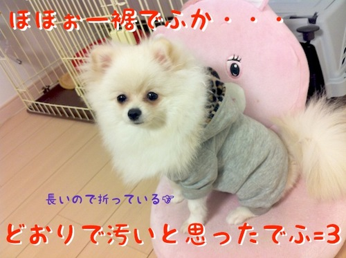 Photo 12月 05, 8 09 03 午後.jpg