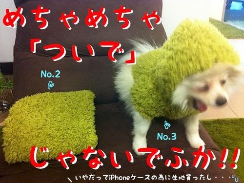 Photo 1月 24, 5 08 17 午後.jpg
