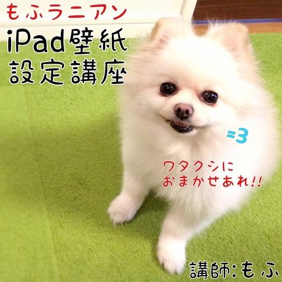 iPad壁紙設定講座-1.jpg